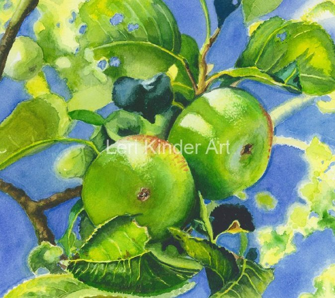 Chilworth Apples