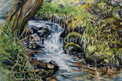 Derbyshire brook [SOLD]
