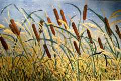A mass of Bullrushes